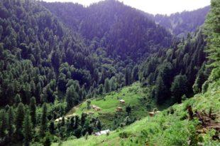 Peer Hassimar, Muzaffarabad
